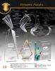 Click this Image to visit the Acrylic Awards category.