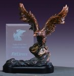 Bronze Eagle Soaring W/ Glass Panel Patriotic Awards