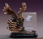 Bronze Eagle W/ American Flag and Glass Insert Patriotic Awards