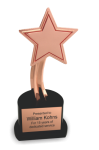 The Recognition Star Sales Awards